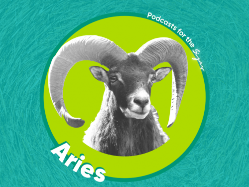 Podcasts for the Signs: Aries